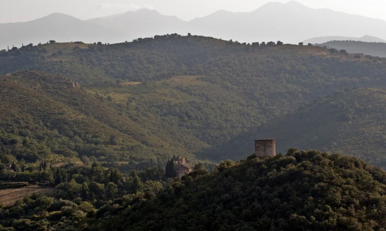 Le Languedoc-Roussilon